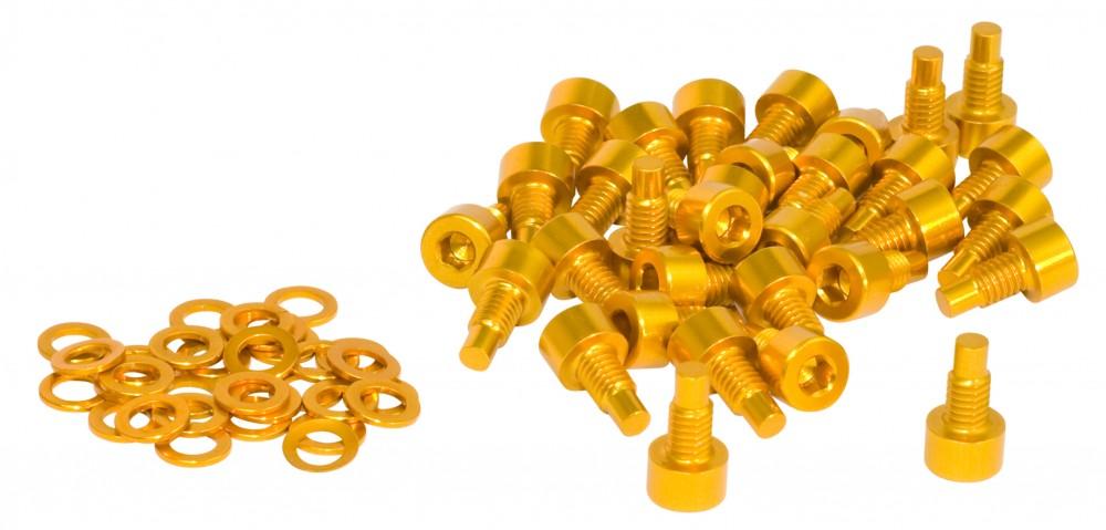 NC-17 Pedal Pins 32 Stück M4x 8mm gold