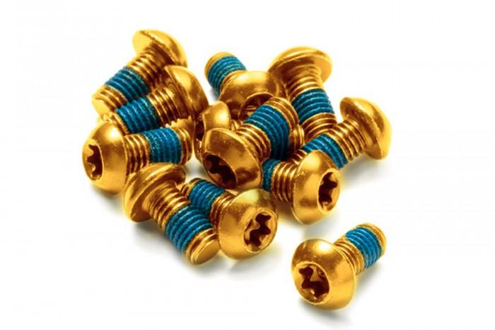 Reverse Bremsscheiben Befestigungs- Schrauben-Set 12 Stück M5x10mm gold
