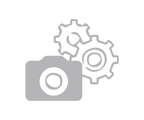 Reverse Pedal Pin Set US-Size Alu gold
