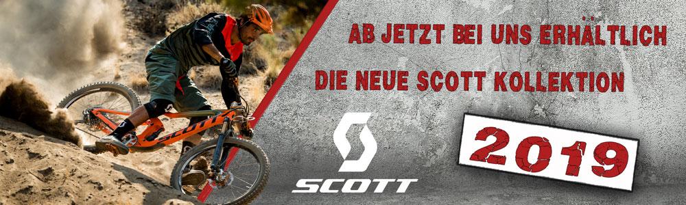 Scott 2019