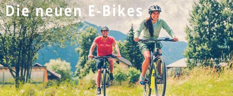 wecycle Bikes